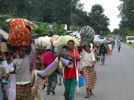 Displaced Population in the Kivu